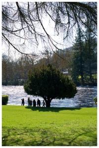 La Rue Et Toi - Edimburg Tree