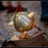 Mini Viking