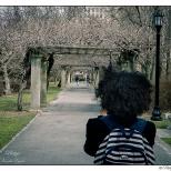 New York Brooklyn Botanical Garden