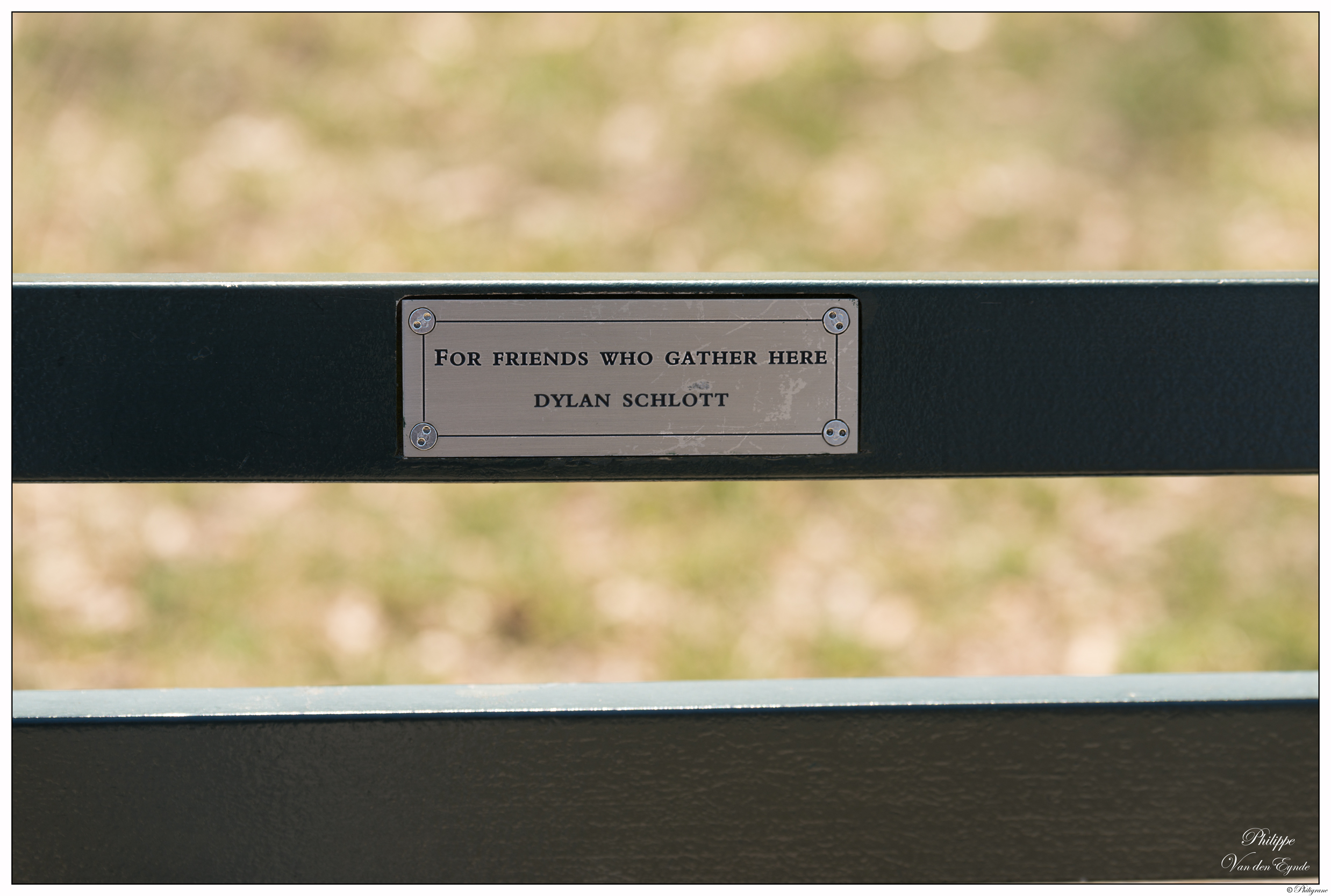 New York Central Park Bench Quote 4 Friends Philigrane