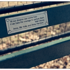 """New York Central Park Bench Quote """"Dreams Can Come True..."""""""