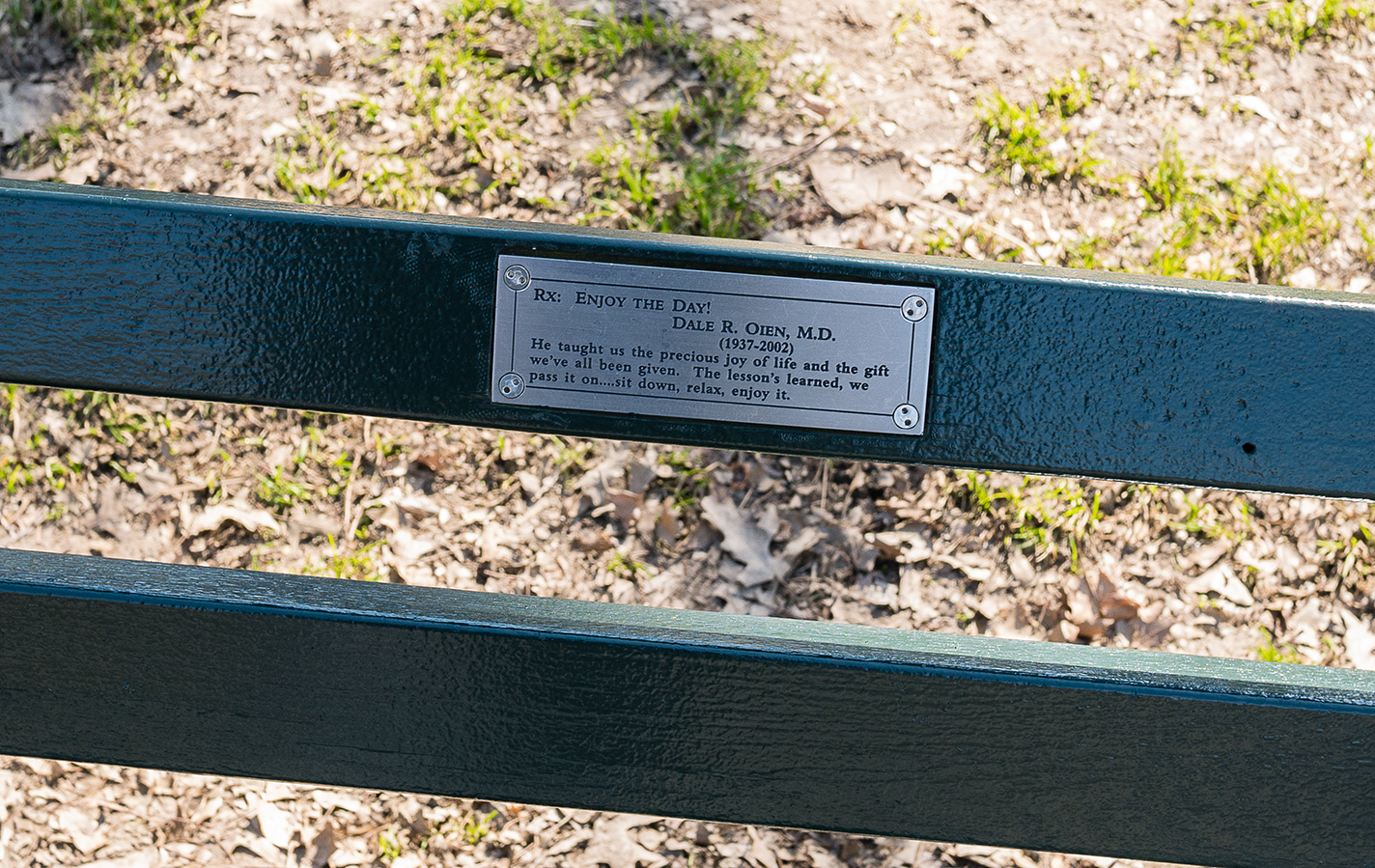 New York Central Park Bench Quote Enjoy The Day Philigrane