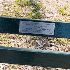 "New York Central Park Bench Quote ""Enjoy The Day"""