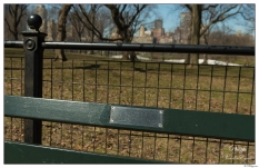 """New York Central Park Bench Quote """"Listen To The Birds..."""""""