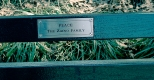 """New York Central Park Bench Quote """"Peace"""""""