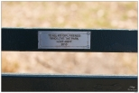 """New York Central Park Bench Quote """"To All My Girlfriends..."""""""