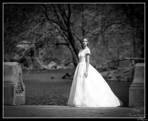 New York Central Park The Bride
