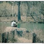New York Singing Alone